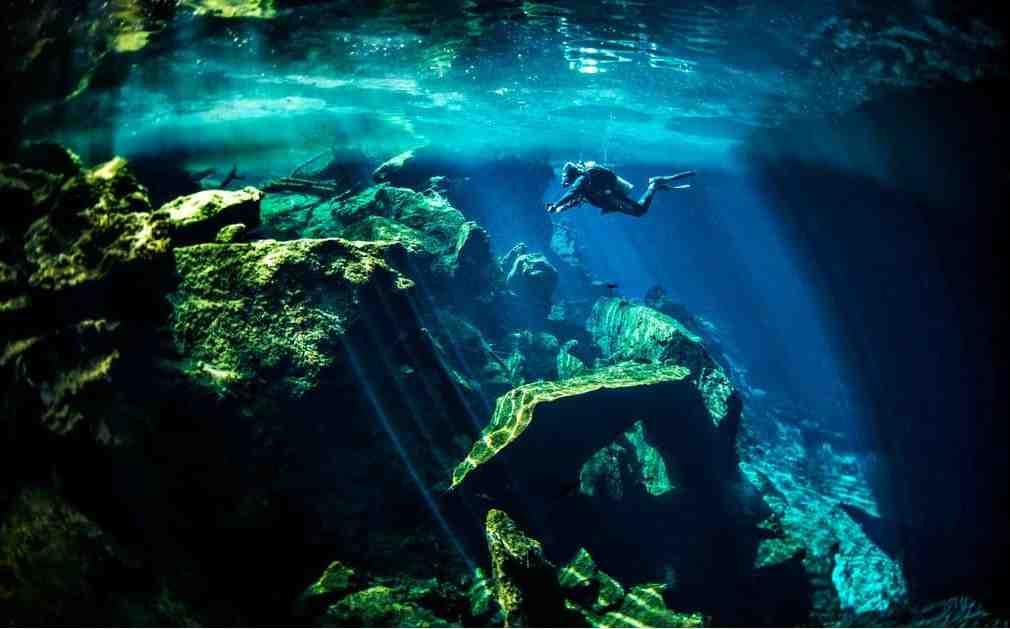 1. Padi Discover Scuba Diving