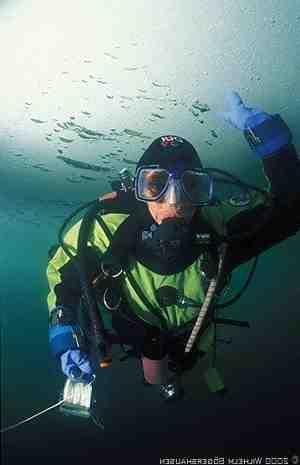 Aliquam présente des histoires de plongée sous-marine