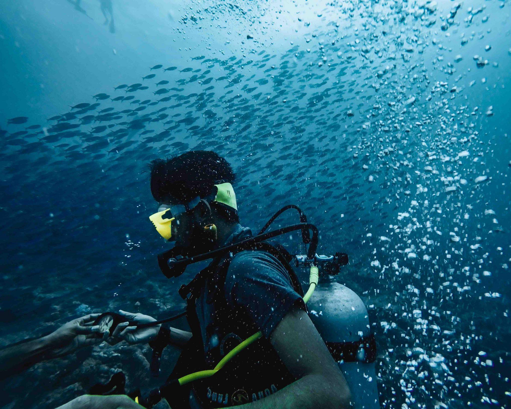 Kama'aina Kids Dive Day — Plongée sous-marine avec but