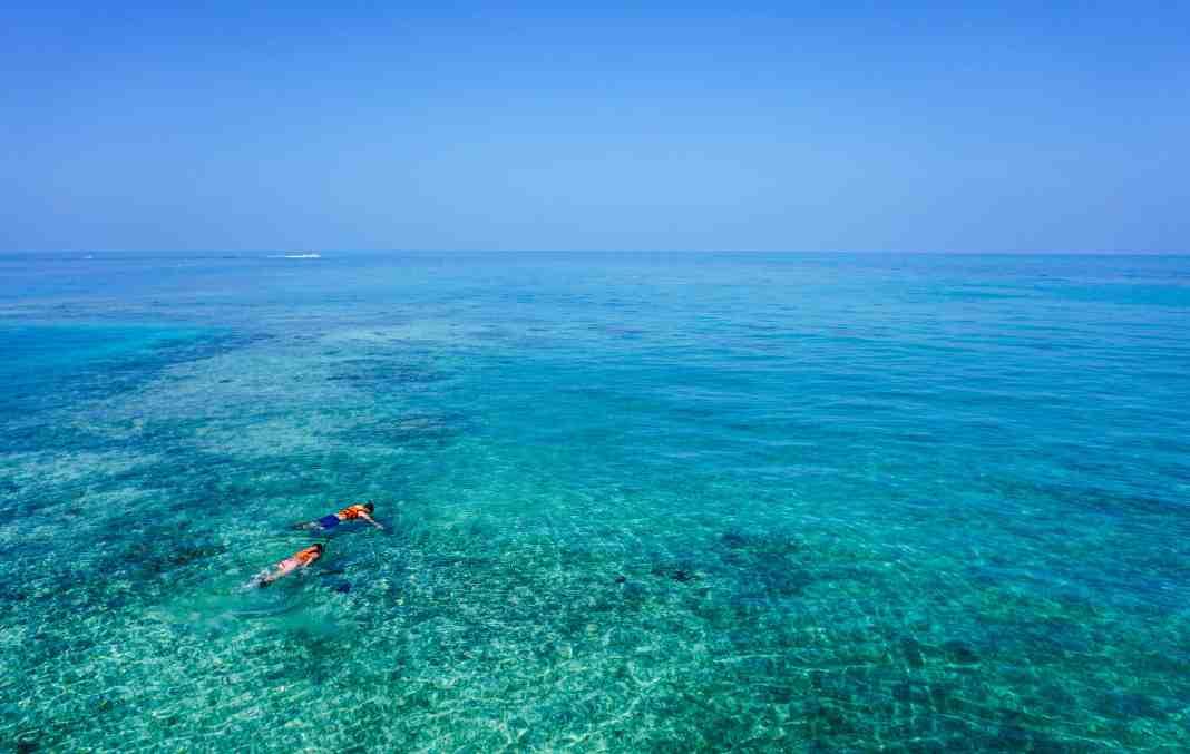 Le meilleur snorkeling et plongée sous-marine à Porto Rico
