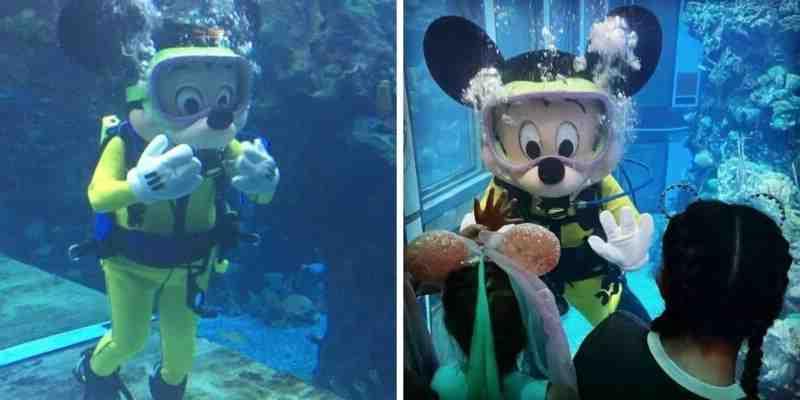 Les fans de Disney regardent Mickey Mouse plonger dans un aquarium
