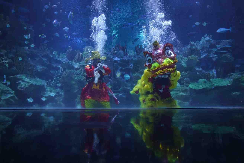 Parineeti Chopra aux Maldives Goers Squab Diving