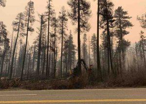 Service forestier : L'incendie de Caldor qui menaçait le lac Tahoe, contenu à 100 pour cent | Nouvelles de Carson City dans le Nevada
