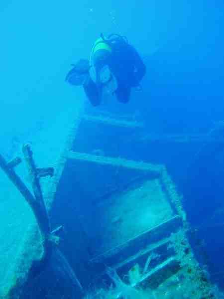 Soudan « Shark Dive Expedition » La Mer Rouge sauvage ! Avec Blue Force Fleet.