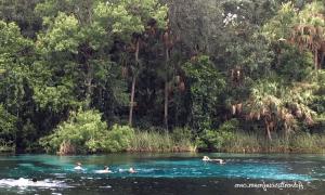 Visiter les sources du centre-nord de la Floride : Alexander Springs